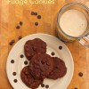 Chocolate Porter Fudge Cookies