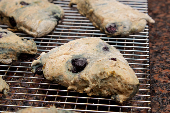 Claudia's Cookbook - Honey Drizzled Baked Blueberry Bannock 8